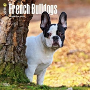 2018 French Bulldogs Wall Calendar