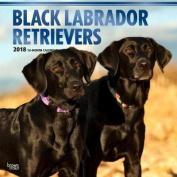 2018 Labrador Retrievers, Black Wall Calendar