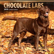 2018 Labrador Retrievers, Chocolate Wall Calendar
