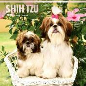 2018 Shih Tzu Wall Calendar
