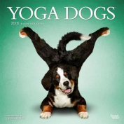 2018 Yoga Dogs Wall Calendar