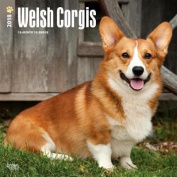 2018 Welsh Corgis Wall Calendar