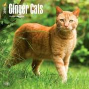 2018 Ginger Cats Wall Calendar