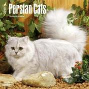 Persian Cats 2018 Wall Calendar