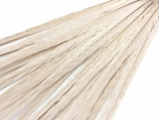 50 Pieces - Ivory 20-60cm Ringneck Pheasant Tail Wholesale Feathers