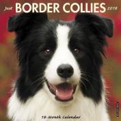 Just Border Collies 2018 Wall Calendar