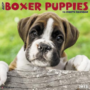 Just Boxer Puppies 2018 Wall Calendar