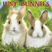 Just Bunnies 2018 Wall Calendar