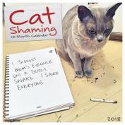 Cat Shaming 2018 Wall Calendar