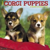 Just Corgi Puppies 2018 Wall Calendar