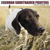 Just German Shorthaired Pointers 2018 Wall Calendar
