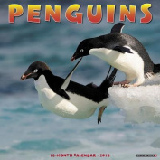 Penguins 2018 Wall Calendar