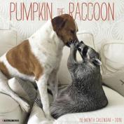 Pumpkin the Raccoon 2018 Wall Calendar