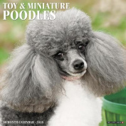 Just Toy & Miniature Poodles 2018 Wall Calendar