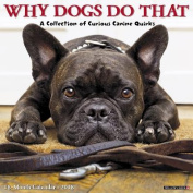 Why Dogs Do That 2018 Wall Calendar