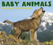 Baby Animals 2018 Box Calendar