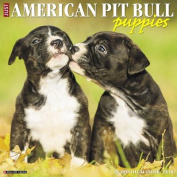 Just American Pit Bull Terrier Puppies 2018 Wall Calendar