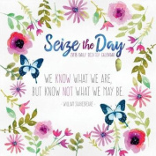 Seize the Day 2018 Daily Desk Calendar