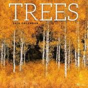 Trees 2018 Wall Calendar