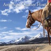 2018 American Quarter Horse Calendar