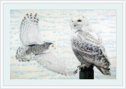 Land of Snow Counted Cross Stitch Kit By Orcraphics …