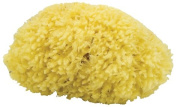 Agiva Marine Small Sponge for Bath