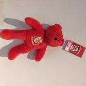 Wales Football Supporter Red Solid Bear