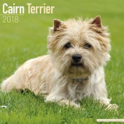 Cairn Terrier Calendar 2018
