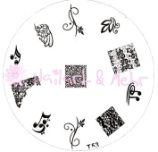 Nail Art Stencil T 53 Musical Notes and French