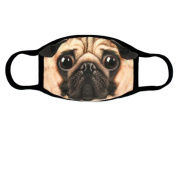 Cute Fashion Ski Winter Mask Anti Dust Face Mouth Warm Masks , Pug