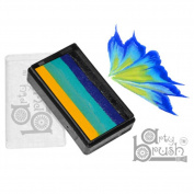 Silly Farm Rainbow Cakes - Iris Arty Brush Cake