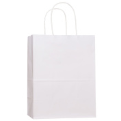 Shopping Bags 8x 4.190cm x 27cm 100Pcs BagDream Gift Bags,Cub, Paper Bags, Kraft Bags, Retail Bags, White Paper Bags with Handles