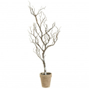 80cm Country Cabin Decorative Brown Potted Snowy Artificial Christmas Twig Tree - Unlit