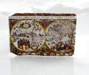 Antique World Map Oyster Travel Card Holder