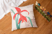 Madaye Home sofa pillow cushions