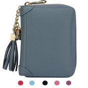 ZORESS Women's Credit Card Case Wallet With 2 ID Window and Zipper Card Holder Purse