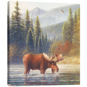 "Tree-Free Greetings 81062 29cm x 29cm ""River Moose"" Themed Wildlife Art EcoArt Home Decor Wall Plaque"