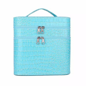 Brendacosmetic Double Layer Large Capacity Makeup Organiser Storage Bag,Portable Handle Travel Case Cosmetic Bag for Women Ladies
