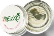 EVXO Matcha Mint Lip Balm - Organic, Vegan, 100% Food Grade, Eco-Friendly