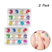 Brendacosmetic 2 Pack -Natural Dry Flower Nail Art Sticker Nail Design ,Lovely Five Petal Flower Nail Beauty 3D Decoration Tool Nail Sticker for Manicure