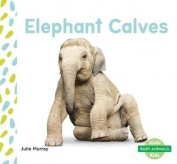 Elephant Calves (Baby Animals)