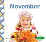 November (Months)