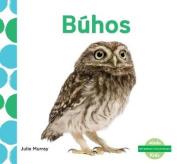 Búhos (Owls) (Me Gustan Los Animales!  [Spanish]