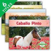 Caballos (Horses) (Set) (Caballos  [Spanish]