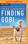 Finding Gobi [Audio]
