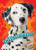 Dalmatians (Awesome Dogs)