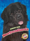Newfoundlands (Awesome Dogs)