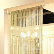 Eyotool 1x2 M Door String Curtain Rare Flat Silver Ribbon Thread Fringe Window P