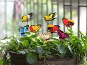 Ginsco 25pcs Butterfly Stakes Outdoor Yard Garden Decor Butterflies, New