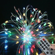 9 Flashing Modes,bolweo Battery Operated Christmas String Lights With Remote New